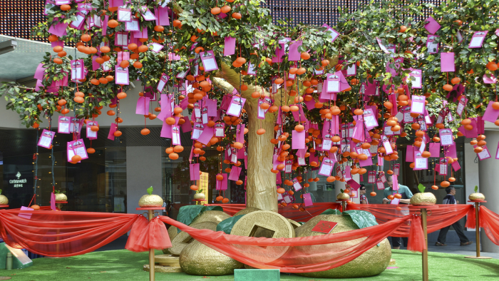 Wishing Tree Ceremony<dataavatar hidden data-avatar-url=https://secure.gravatar.com/avatar/ee4d8a3749ea3e27dc284b32e770da0c?s=96&d=mm&r=g></dataavatar>